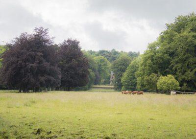 Landgoed Elswout
