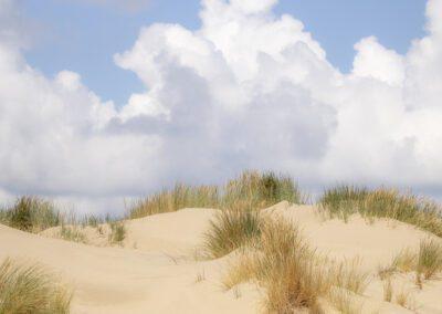 Voornes Duin
