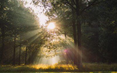 Landgoed Eerde: Het pareltje van Overijssel