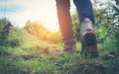 Alleen op wandelavontuur
