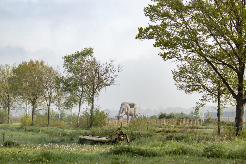 wandelen Landgoed De Utrecht