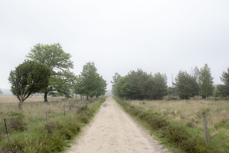 Plankenpad route