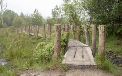 Plankenpad route: een Dwingelderveld wandelroute