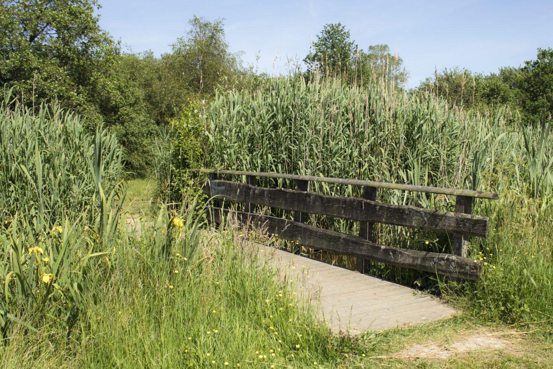 Polderpark Cronesteyn