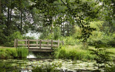 Rondje Landgoed Groeneveld Baarn